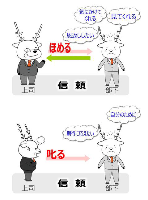 HP画像_アニメート.jpg